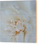 White Dream Wood Print