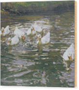 White Ducks On Water Wood Print
