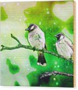 White-eared Bulbul - Watercolor Wood Print