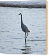 White Egret Wood Print