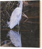 White Egret And Reflection Wood Print