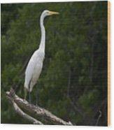 White Egret-signed-#0493 Wood Print