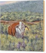 White Face Bull Wood Print