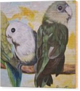 Chloe The    Flying Lamb Productions           White Faced Lovebirds Wood Print