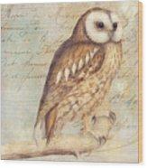 White Faced Owl Wood Print