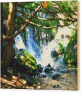 White Falls Wood Print
