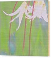 White Fawn Lilies In The Rain Wood Print