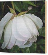 White Floral Wood Print