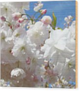 White Floral Tree Flower Blossoms Art Baslee Troutman Wood Print