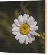 White Flower 1 Wood Print