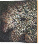 White Flowers On Bald Head Wood Print