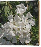 White Flowers On Green Leaves Wood Print