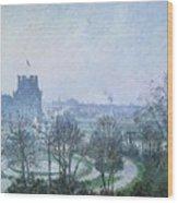 White Frost Jardin Des Tuileries Wood Print