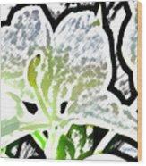 White Ginger Wood Print
