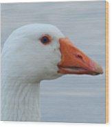 White Goose Portrait Wood Print