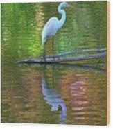 White Heron Wood Print