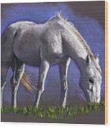 White Horse Grazing Wood Print