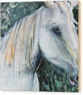 White Horse Wood Print by Mindy Newman