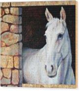White Horse1 Wood Print