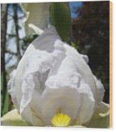 White Iris Flower Art Prints Canvas Irises Artwork Wood Print