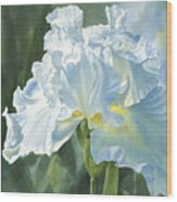 White Iris Wood Print by Sharon Freeman