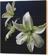 White Lilies On Blue Wood Print