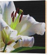 White Lilium Wood Print