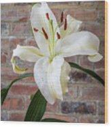 White Lily Portrait Wood Print
