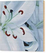 White Lily Triptych Part1 Wood Print