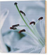 White Lily Triptych Part3 Wood Print