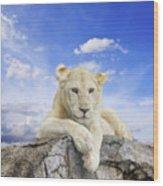 White Lion Wood Print by Anek Suwannaphoom