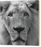 White Lion Hue Wood Print