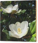 White Magnolia Flowers 01 Wood Print