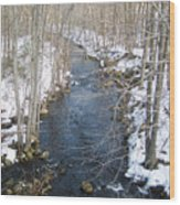 White Mill Park - Winter 2 Wood Print