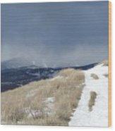 White  Mist Wood Print