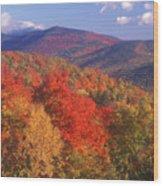 White Mountain Foliage Bear Notch Wood Print