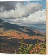 White Mountain Foliage Wood Print