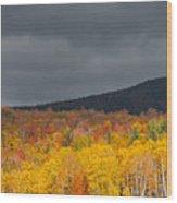 White Mountain Hillside Wood Print