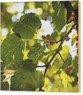 White Mulberries Wood Print