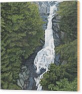White Oak Canyon Wood Print