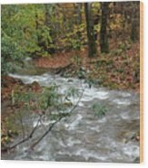 White Oak Run Autumn Wood Print