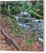 White Oak Run In Spring Wood Print