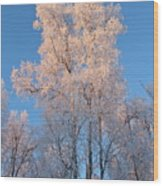 White On Blue Wood Print