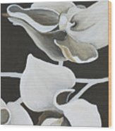 White Orchid Middle Section Wood Print