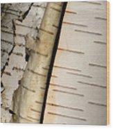 White Paper Birch Tree Bark Wood Print