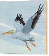 White Pelican 1 Roger Bansemer Wood Print