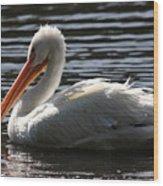 White Pelican . Ripple Waters Wood Print
