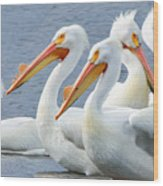 White Pelicans At Nelson Lake Wood Print