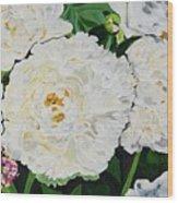 White Peony Garden Wood Print