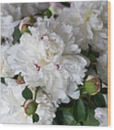 White Peony With Red Traces Wood Print